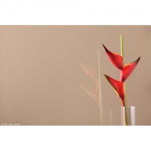 Цветное стекло Brown Light 4 мм, цвет светло-коричневый